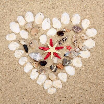 Kum ve Deniz Kabuğu Sanatı