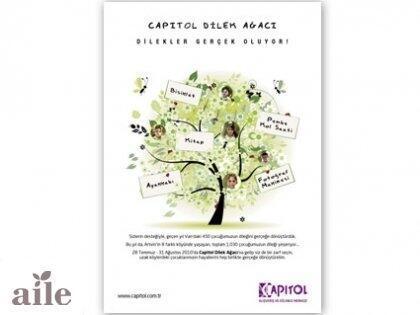 Bu Yıl Capitol Dilek Ağacı'nda Neler Var?