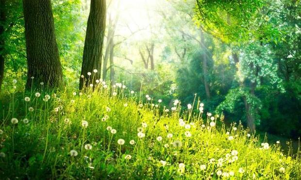 Rüyada baharın geldiğini görmek