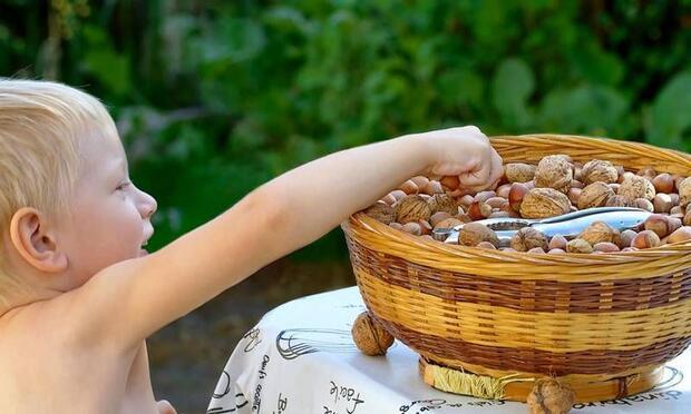 kuruyemiş yiyen çocuklar ile ilgili görsel sonucu