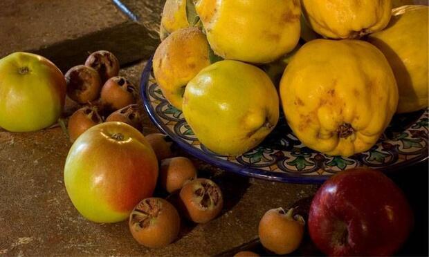 Bu meyvelerin çekirdeklerini yutmak tehlikeli!
