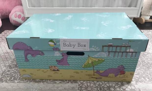 Bebeklerini karton kutuda yatırıyorlar