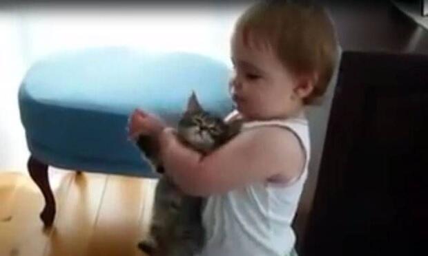 Küçük kız kediyi biraz fazla seviyor!