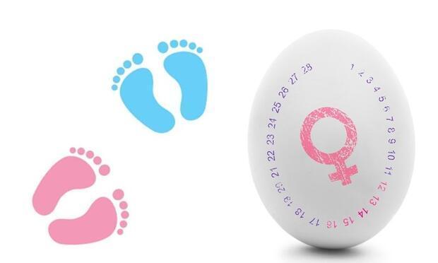 Rus Takvimi Ile Bebek Cinsiyeti Hesaplama Nasıl Yapılır Rus Takvimi
