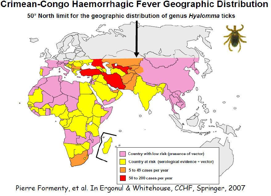 overview of crimean congo hemorrhagic fever essay • species: crimean-congo hemorrhagic fever virus 1 center for agriculture and biosciences international (2015) crimean-congo hemorrhagic fever retrieved from.