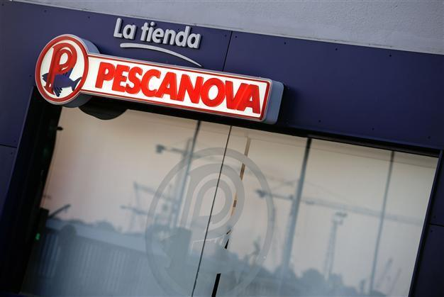 Accounting scandal hooks Spanish frozen fish giant - Latest News