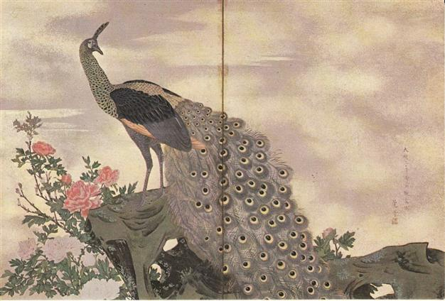 The peacock: A symbol of royalty