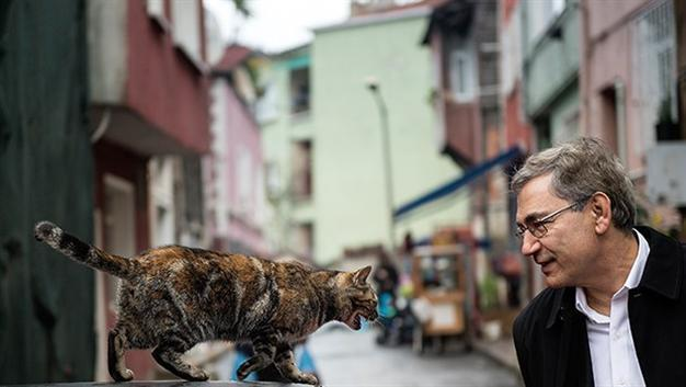 Image result for orhan pamuk kedi