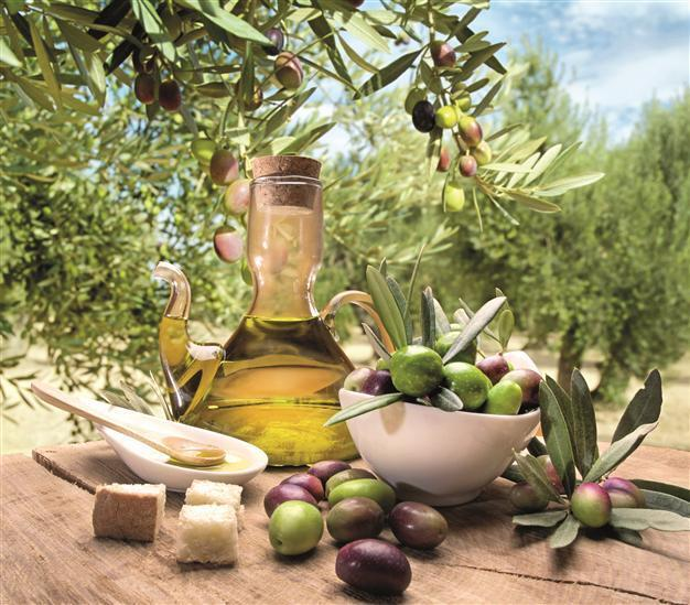 Turkey unable to benefit from rise in olive oil production