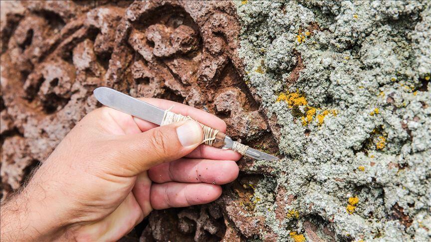 Seljuk cemetery reveals medieval life