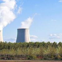 Presidential circular urges immediate finalization of nuclear power plant processes