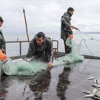 Fishermen set sail for Lake Van as fishing ban lifted