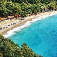 Marmaris bay dedicated to sharks for protection