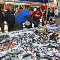 Above-average water temperature in Black Sea leads to poor catch