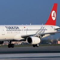 Turkish Airlines halts domestic flights till April 20