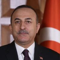 Turkish FM, counterparts discuss virus via video link