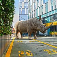 Istanbul artist uses rhinos to raise awareness