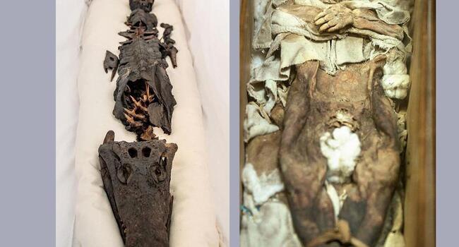 The two-headed mummy that stirred panic in Ottoman palace