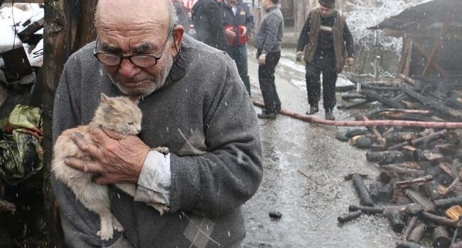 Photo of Turkish man who lost everything except kitten in fire awarded