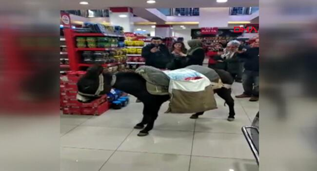 Protesting plastic bag charge, Turks shop with donkey, wheelbarrow