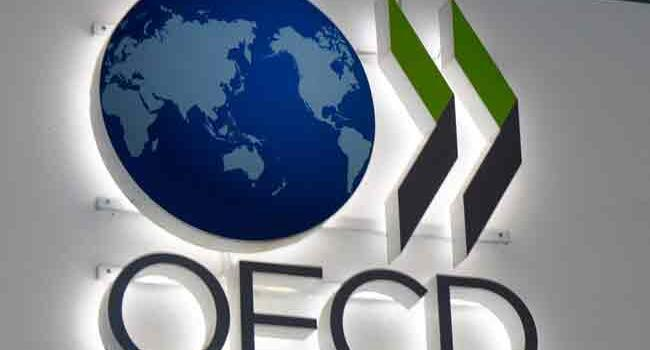 OECD revises Turkish GDP growth forecasts