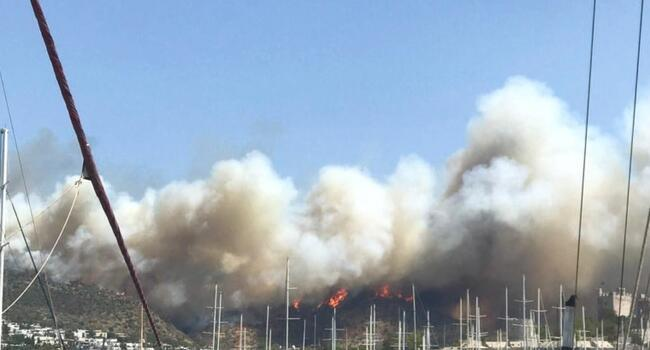 Tourists in Bodrum evacuated by boat amid fires