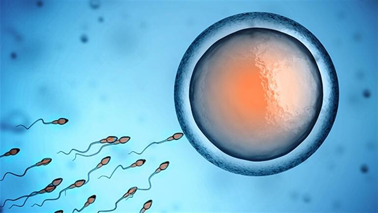 Sperm sağlığında son gelişmeler