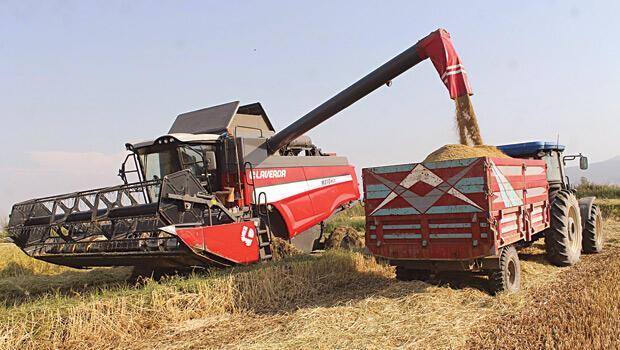 Milli tarım seferberliği