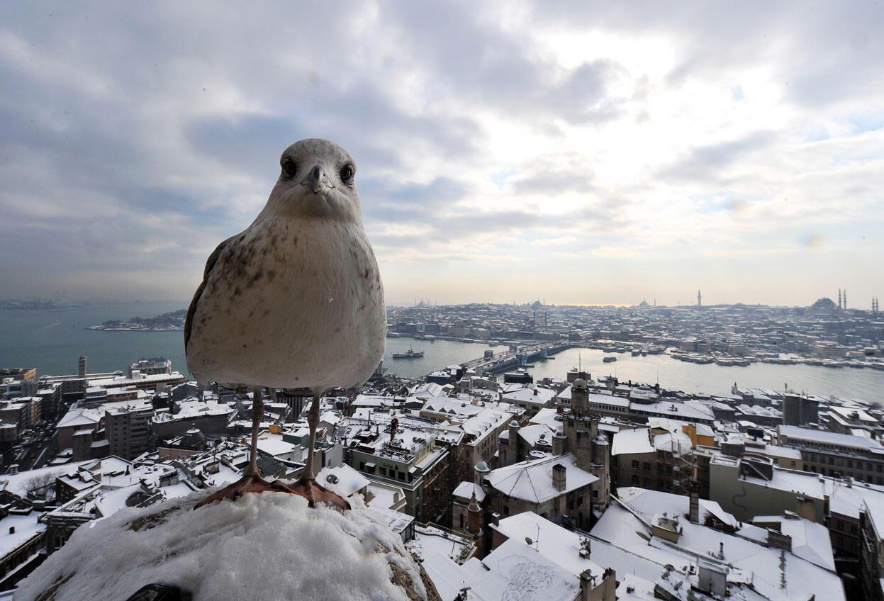Soğuk havalarda İstanbul'da gezilecek en güzel 9 yer