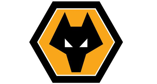 Wolverhampton, Premier Lig'de kendisine yer arıyor