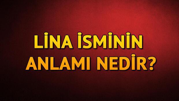 Lina isminin anlamı nedir? Lina ne demek?