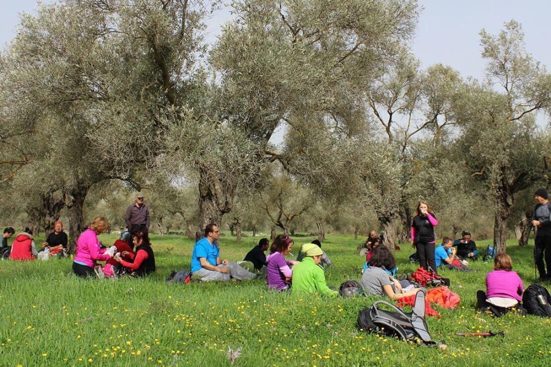 4fc39aabd5806 Karia Yolu'nda çiçekler arasında: Uyku Vadisi - Seyahat Haberleri