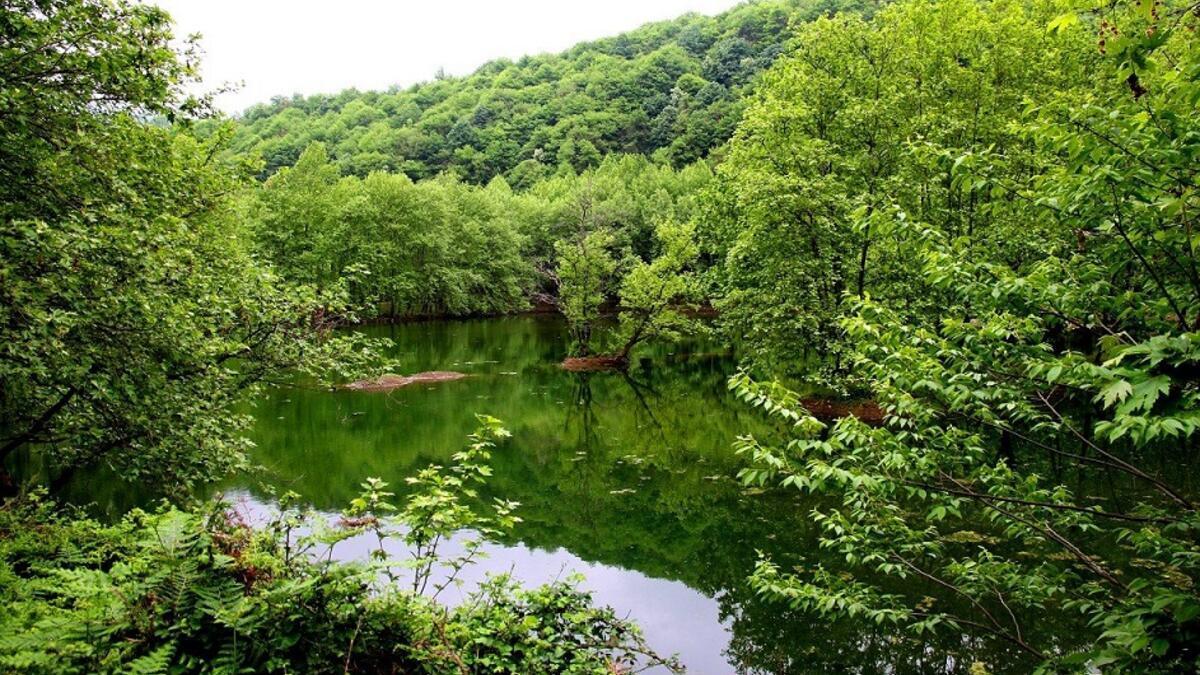 Yeşilliklerin içinde bayram tatili İstanbula iki saat uzaklıkta 18
