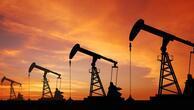 Suudi Arabistandan OPEC açıklaması