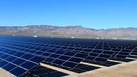 Dev ihale güneşte sektörü umutlandırdı