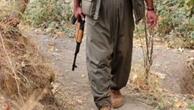 PKKnın İran uyruklu yöneticisi yakalandı
