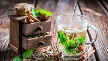 Metabolizmanızı hızlandıran bitkisel karışım