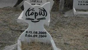 Hayvan Mezarlığı kapatıldı