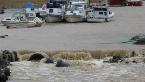 Riva Deresi taştı; tekneler sele kapıldı, bazı ev ve işyerlerini su bastı
