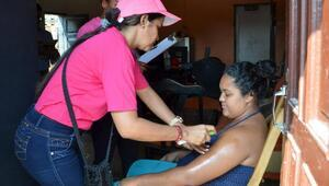 3 binden fazla hamilede Zika virüsü