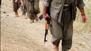 Ankara'da terör operasyonu: PKK'nın gençlik yapılanmasının Ankara sorumlusu yakalandı