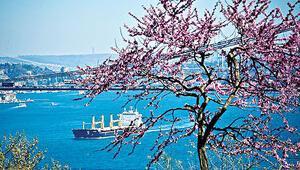 Baharda İstanbulun erguvan şölenine tanıklık eden 12 yer