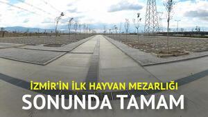 İzmirin ilk hayvan mezarlığı tamamlandı