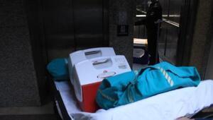 Kazada ölen Hilal, organlarıyla hastalara umut oldu