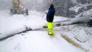 Elektrik arıza ekiplerinin karla mücadelesi