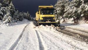 Pamukkalede karla mücadele