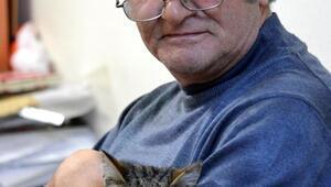 Bıdı adlı kedi, fakülte koridorlarına geri döndü