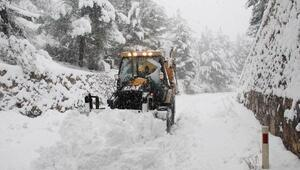 Adananın 7 ilçesinde karla mücadele
