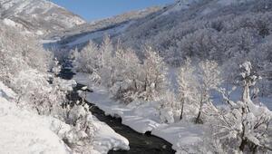 Tuncelide kar yağışı nedeniyle 250 köy yolu ulaşıma kapandı