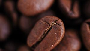 Kahve kokusunu içinize çekebileceğiniz en iyi kahveciler